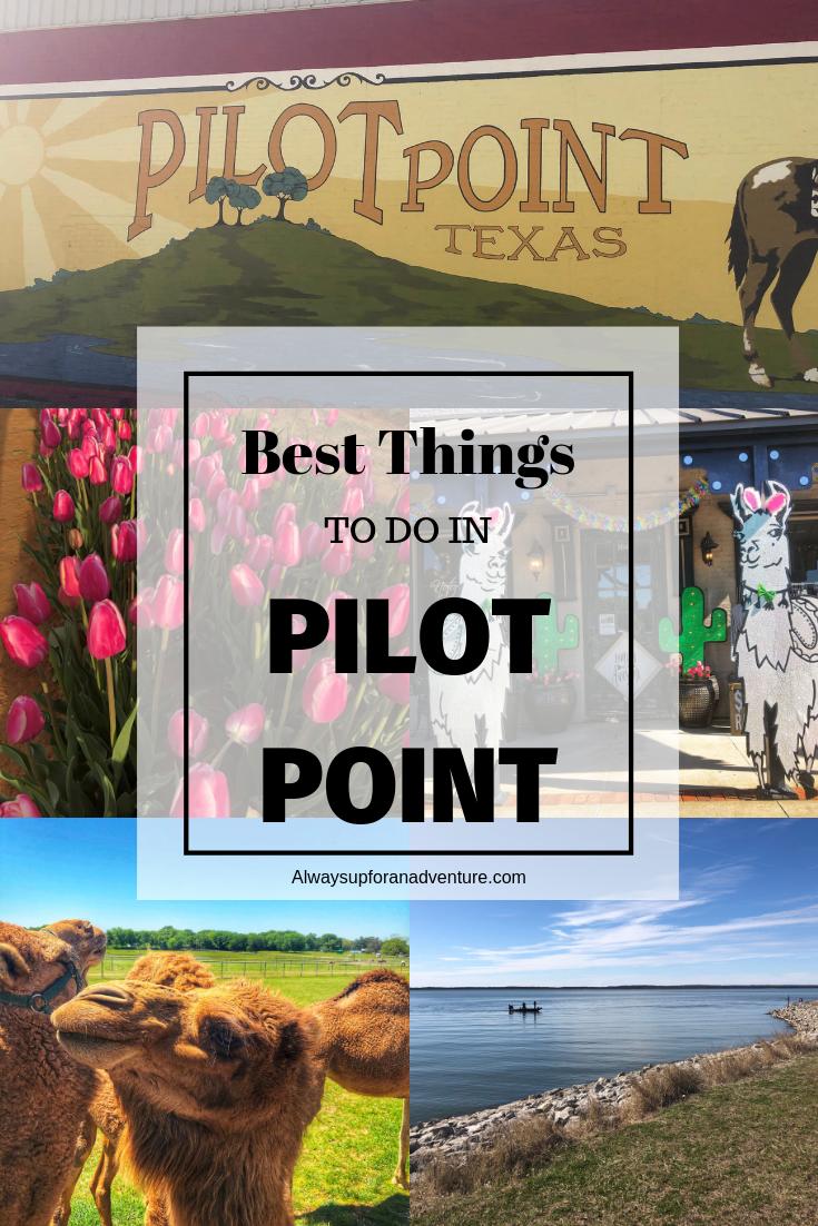 Ultimate Road Trip Packing List